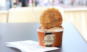 Taste it for yourself! Authentic Italian Gelato at Gelato Village